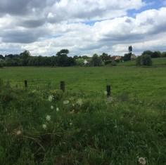 groen veld voor boerderij op heuvel