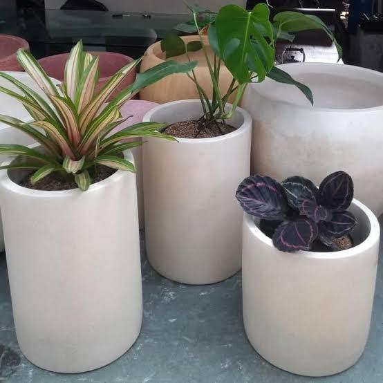 Langkah Membuat Pot Bunga Minimalis dari Beton