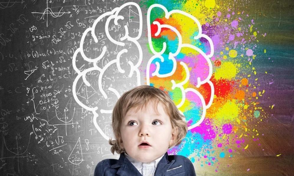 Hal Penting Dalam Perkembangan Otak Anak Usia Dini