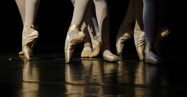 Chaussons danse pointes