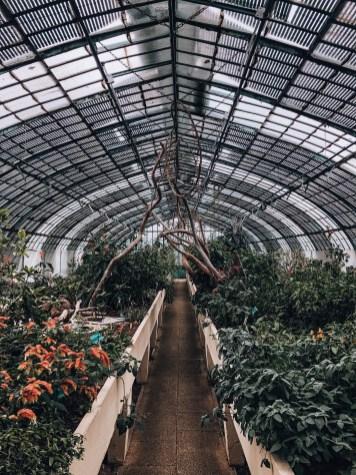succulentes-jardin-serres-auteuil