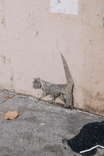 chat butte aux cailles