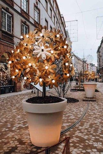 arbres-noel-strasbourg