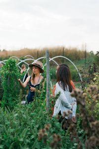 Herbalist-Lacey-Walker