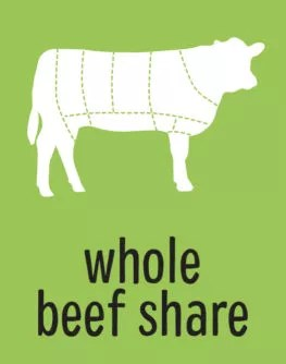 Whole Beef Share