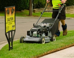 Gardening Franchise Businesses
