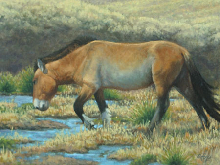 """Morning Drink   oil   12""""x16"""" (price on request)"""