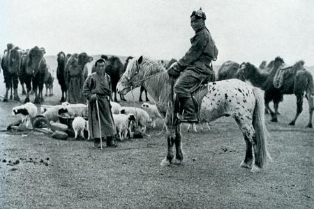 Mongolian herder, late 1920's
