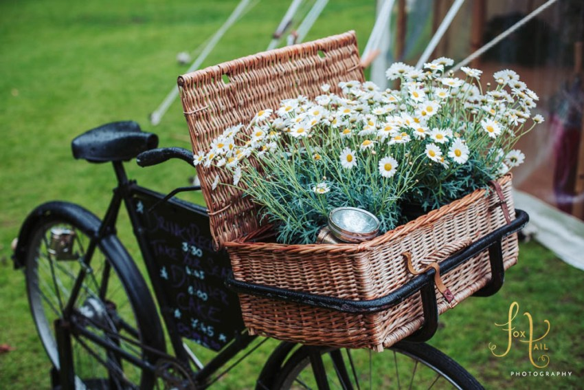 Old bicycle with basket full of daisy's for wedding decorations.