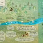 EPEC Health Infographic Design and Illustration