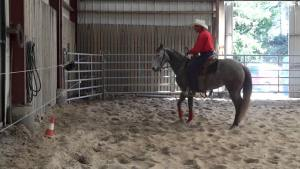 Pro-Cutter Practice coached by Jared Woody @ Finnigan Farms Arena and Stable