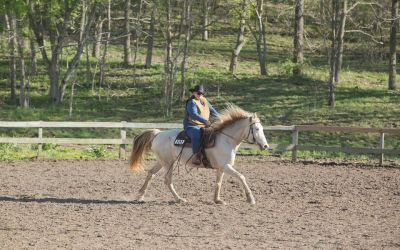 Susan's Viewpoint – Over the Hump With Her Missouri Fox Trotter
