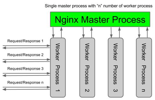 nginx worker