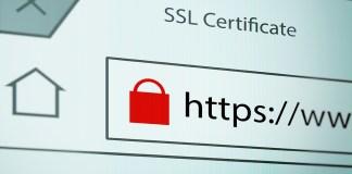 How does SSLTLS works