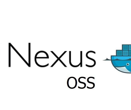 How to run Nexus Repository manager on Docker