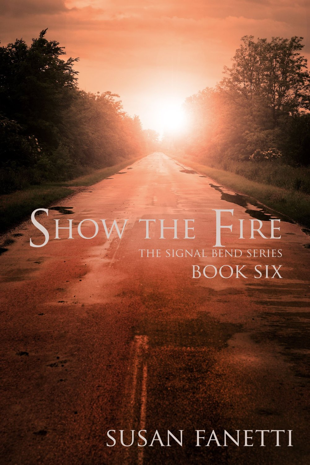 Show the Fire Book Cover