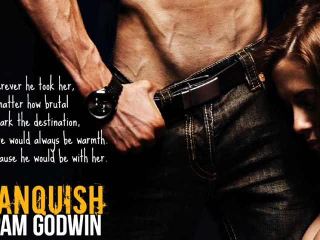Vanquish by @pamgodwinbooks {blog tour + interview + review + giveaway} @BTSPromosPR ::