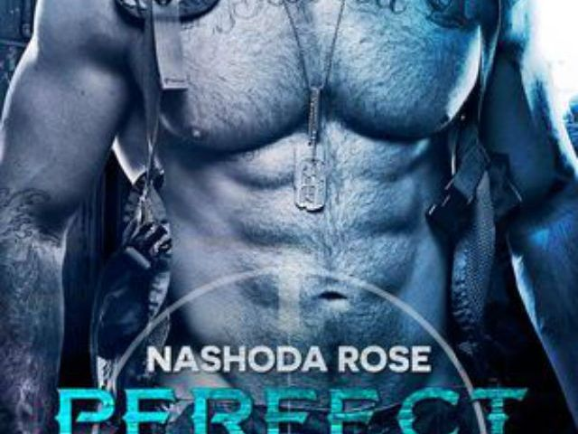 Review – Perfect Chaos by Nashoda Rose