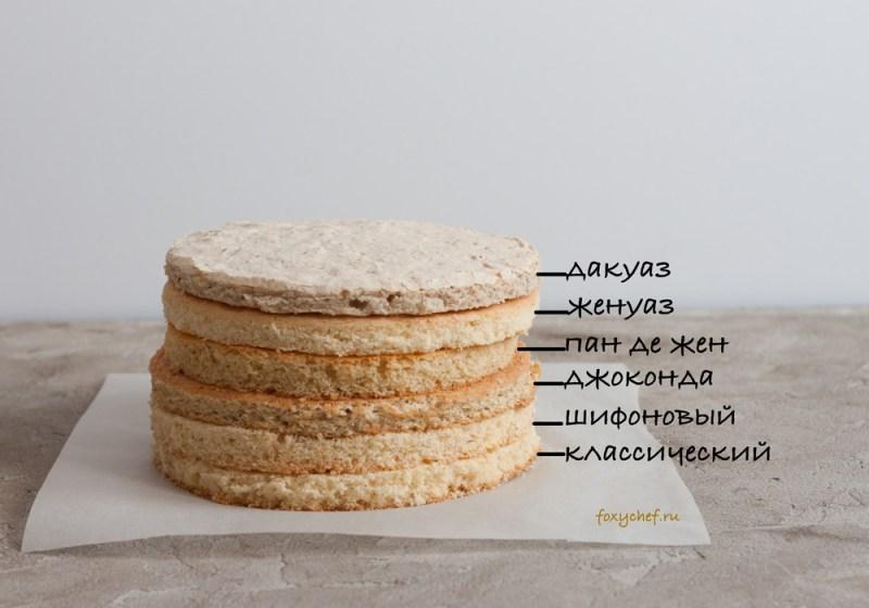 vidy-biskvitov