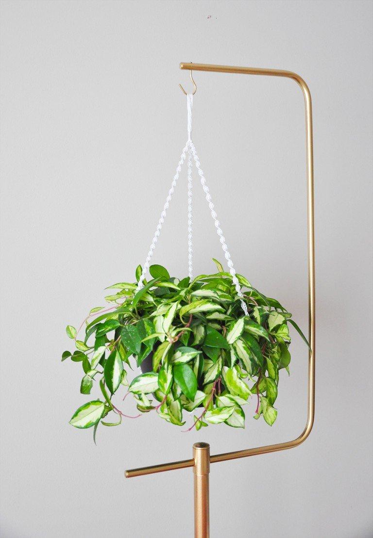 Hanging Plants Pots