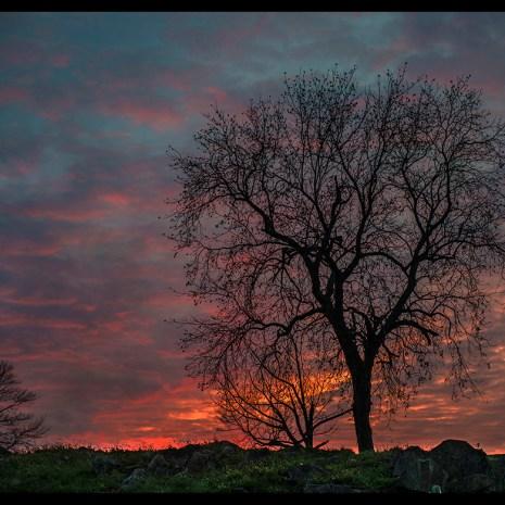 Bill_Woodley_US_Sunset_photograph-29x22x.75_300