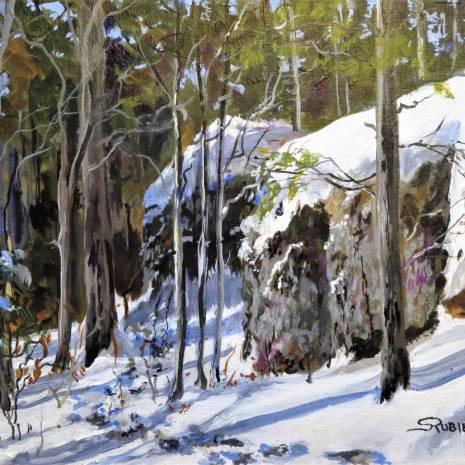 Scott_Rubie_Snow_Trails_8X10_acrylic