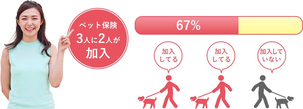 ペットオーナーの新常識!ペット保険への加入者が増えています