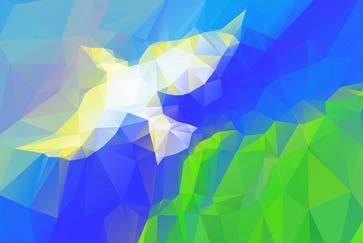 dove-flying-1-8-2017