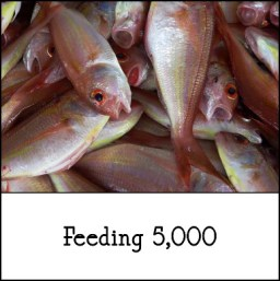 2-24-2018 feeding the five thousand