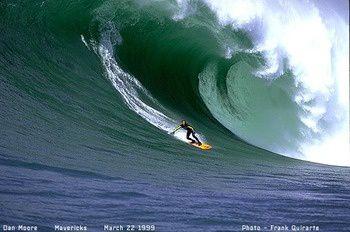 Surfmaverickabbaroo