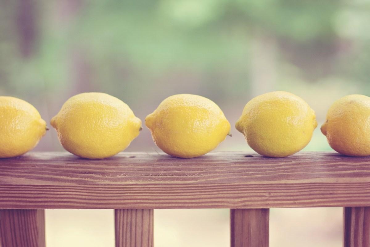 レモンの育て方と種類|実が出ない時の対処法は?