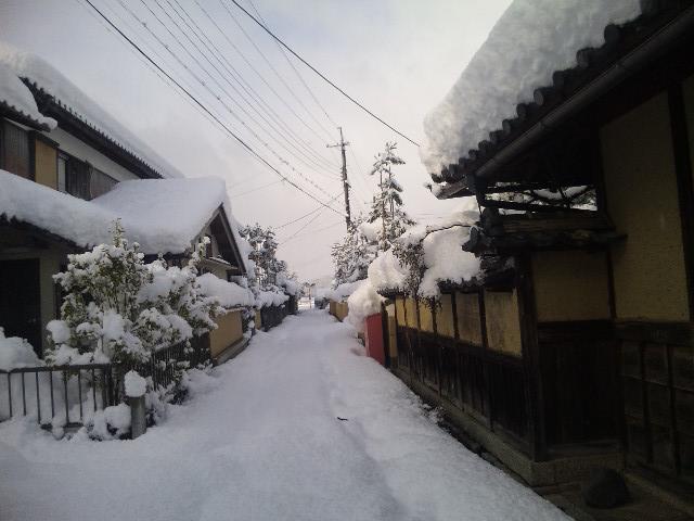 ゲストハウス藤原邸の前の道の雪