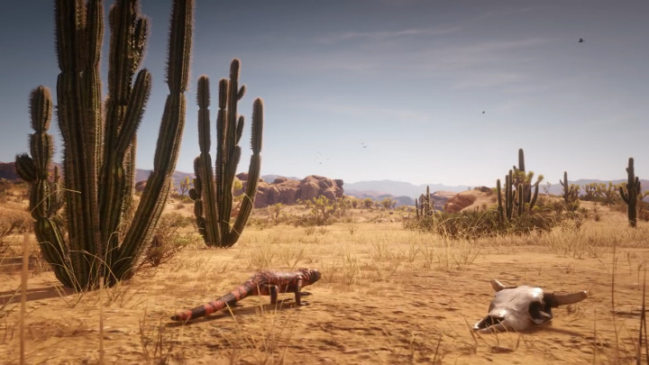 Red Dead Redemption2 レッド・デッド・リデンプション2 荒野