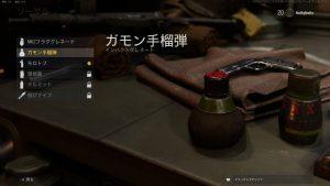 ガモン手榴弾_Vanguard Screenshot 2021.09.03 - 09.45.19.19