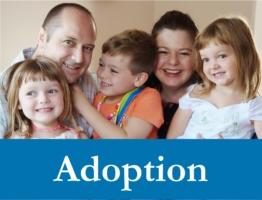 Adoption Web Icon