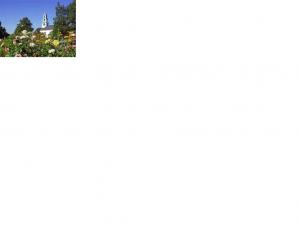 FPS flowers