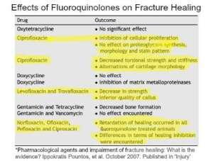 Fluoroquinolones and Fracture Healing