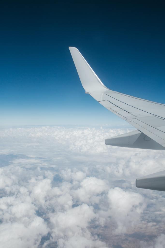 expatriation-algerie-avion