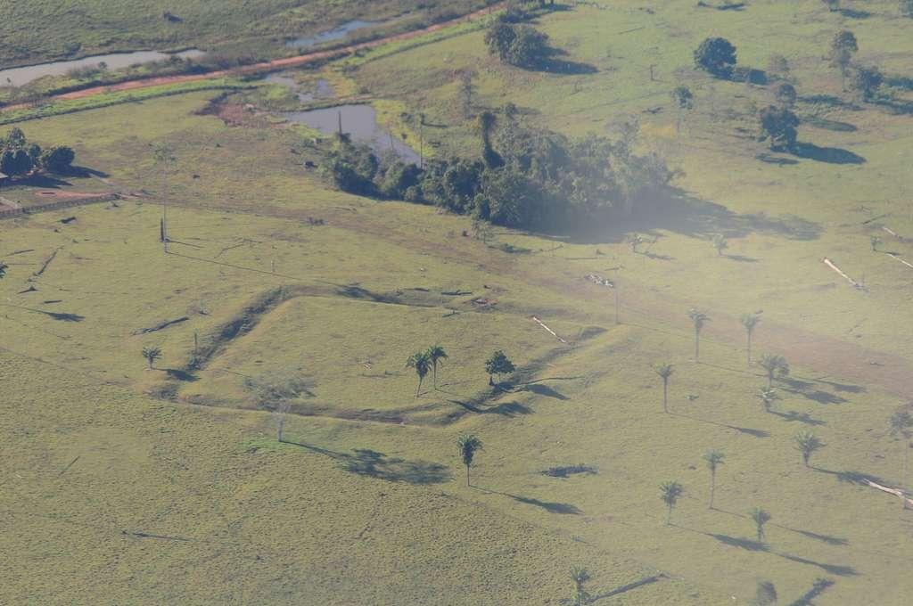 Plus de 450 géoglyphes comme celui-ci ont été découverts dans l'ouest du Brésil. La déforestation les a mis à nu. De récentes recherches ont montré que dans ces endroits, avant que ne s'étendait la forêt amazonienne aujourd'hui détruite, des cultures de palmiers avaient remplacé des forêts de bambous… © Diego Gurgel