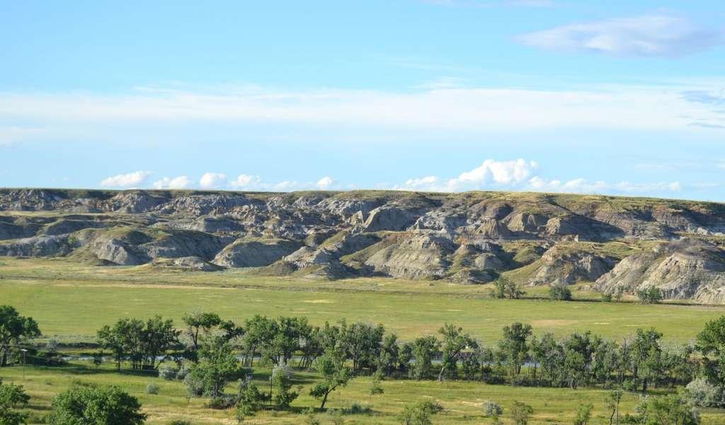 Une vue des fameuses Badlands, le paradis des chasseurs de dinosaures en Amérique du Nord. L'image est celle de la formation de Judith River, une formation géologique du Montana. © Royal Ontario Museum