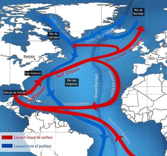 La circulation thermohaline en Atlantique. Le Gulf Stream fait partie des courants de surface qui transportent de la chaleur. Il évacue vers l'est l'eau passée par la Caraïbe. Par la dérive nord-atlantique, une partie de cette eau monte en mer de Norvège, où elle se refroidit beaucoup. En hiver, froide et salée, elle plonge et finit par couler en profondeur dans l'Atlantique, vers le sud. © DR
