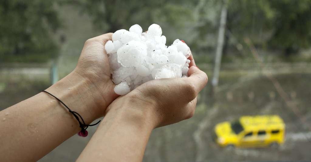 Les averses de grêle peuvent être particulièrement destructrices. © Nikolay Litov, Shutterstock