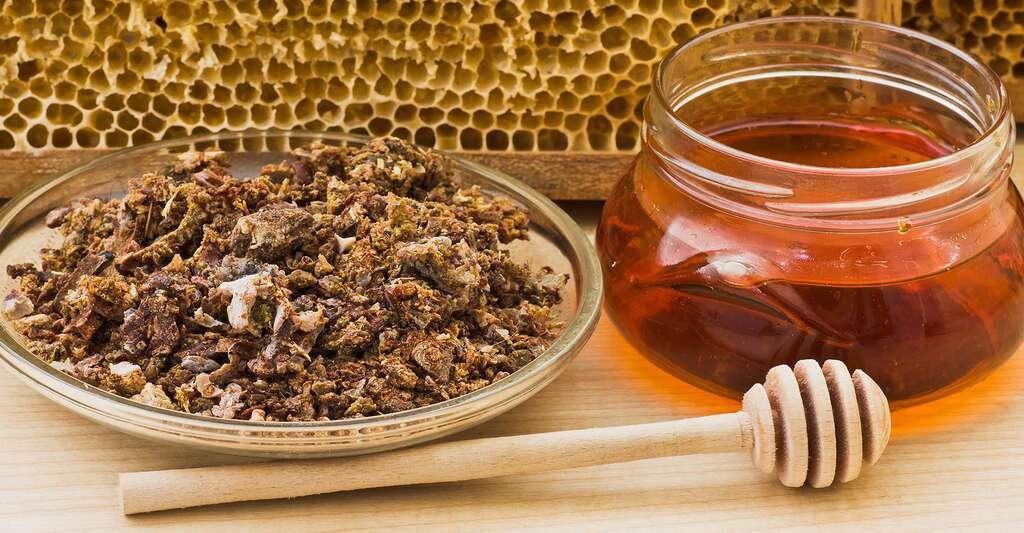 propolis pure pot de miel