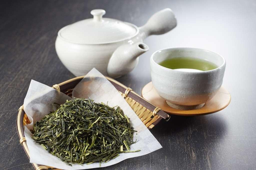 Les feuilles de thé vert ne sont pas fermentées et conservent leur couleur verte. © funny face, Fotolia