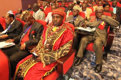 Les chefs coutumiers à Kinshasa le 18 au 20 07 2013