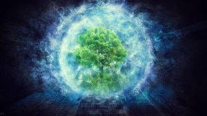 SOTT FOCUS: La science relative à l'intelligence végétale prend racine