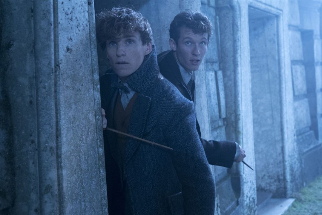 Les Animaux fantastiques : Les crimes de Grindelwald : Photo Callum Turner, Eddie Redmayne