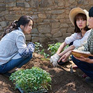 """Résultat de recherche d'images pour """"little forest film coréen photos"""""""