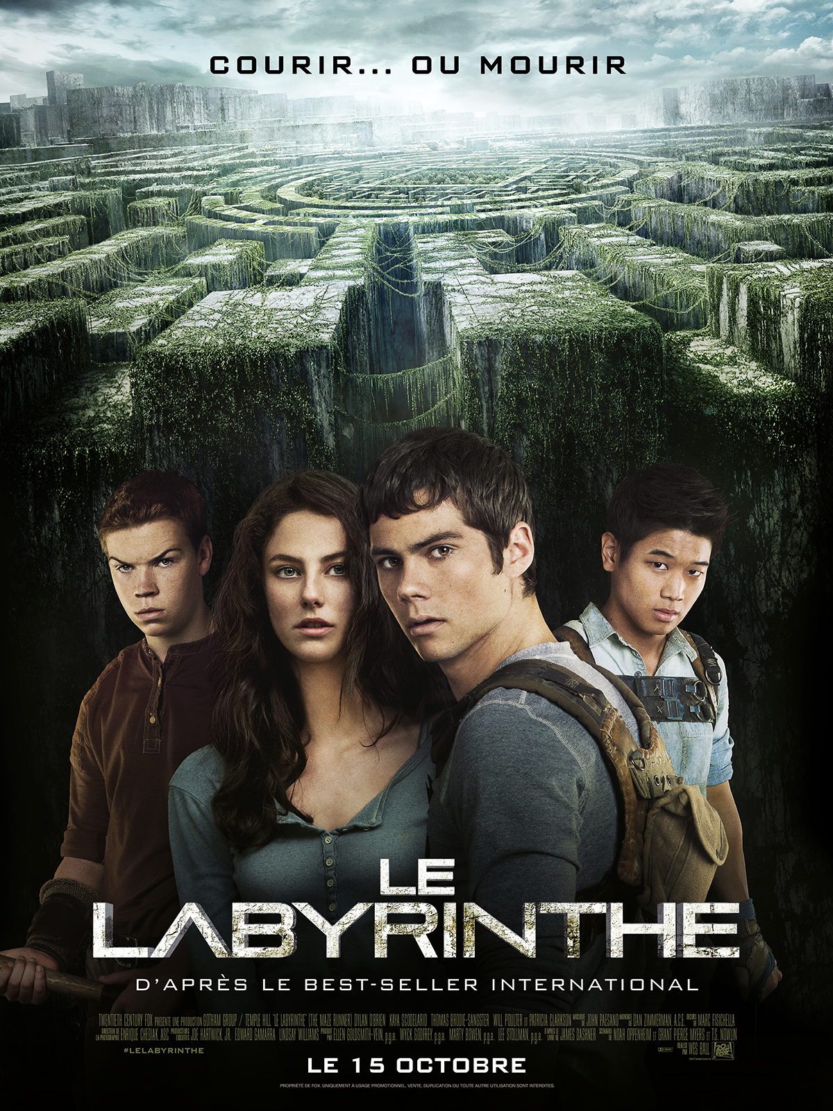 """Résultat de recherche d'images pour """"le labyrinthe"""""""