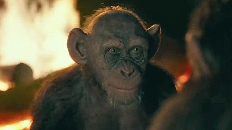 """Résultat de recherche d'images pour """"la planete des singes 3"""""""